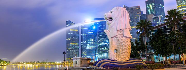 Angebot nach Singapur in der Business Class